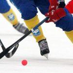 Уточнено время начала матчей заключительного этапа Кубка РФ вИркутске